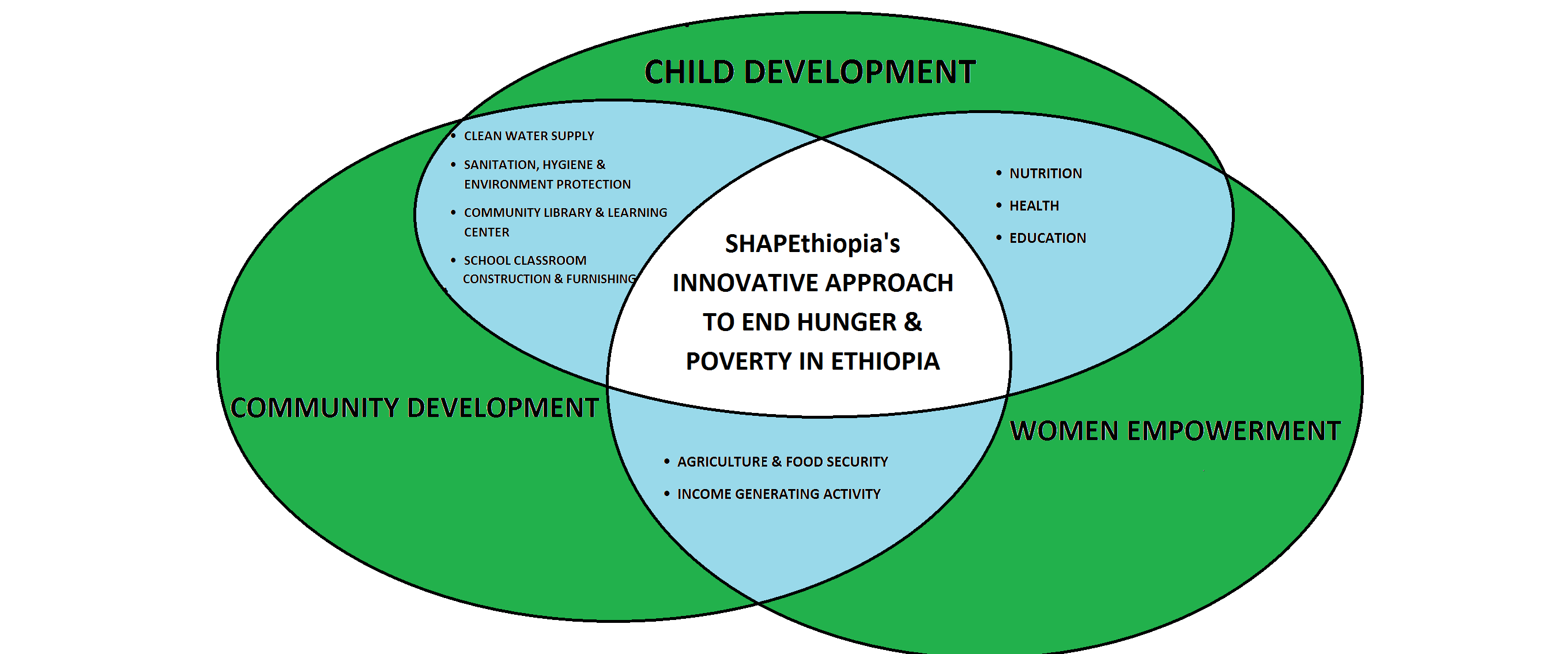 SHAPEthiopia's Innovative Approach