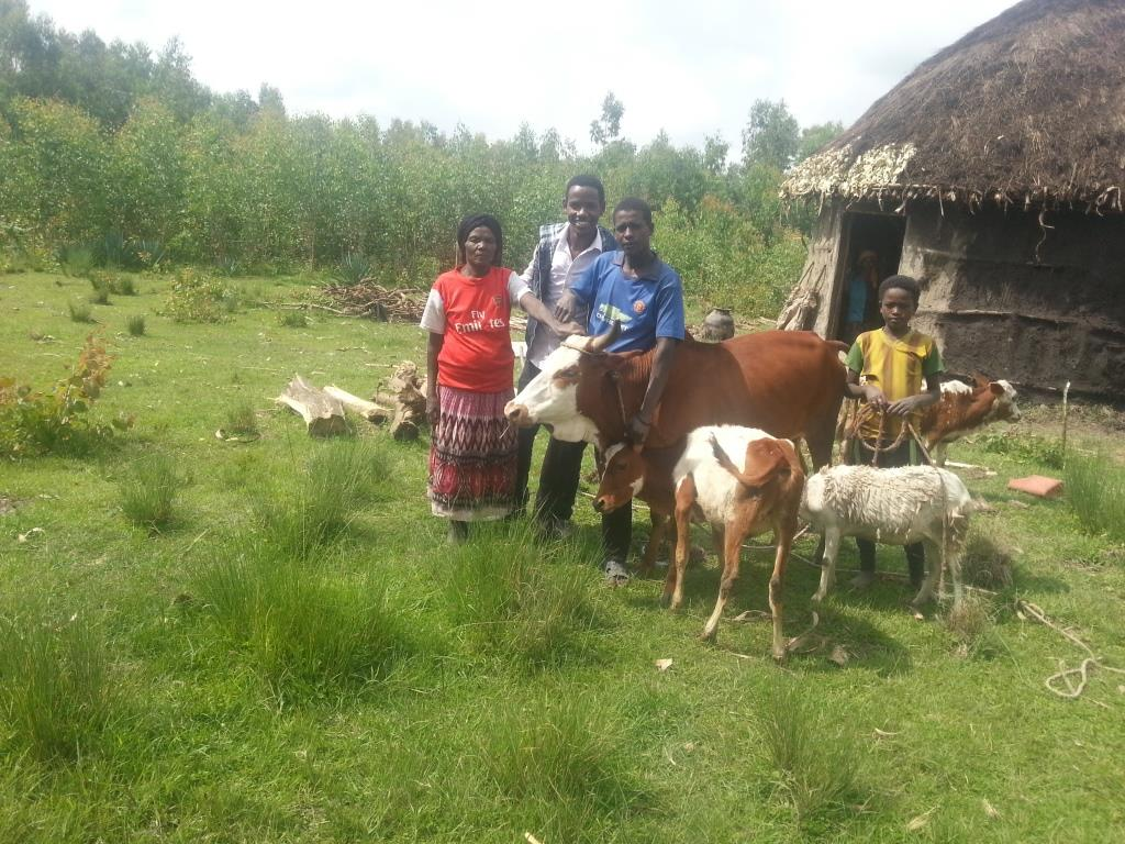 widows' hope poultry and livestock development project