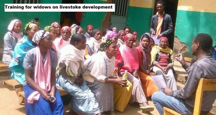 widows' empowerment program
